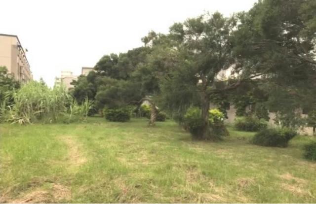 南大附中建地,台南市永康區永勝街