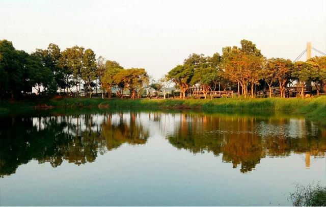 白河小南海561透天建地,台南市白河區枋子林